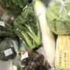 頼んで良かったふるさと納税☆1万寄付で米&野菜☆山口県宇部市