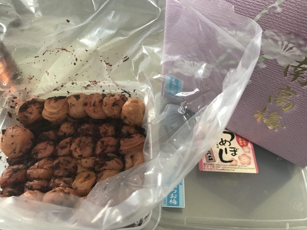 和歌山県湯浅町ふるさと納税梅3