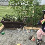 1歳児との手作り時間[農作業・料理]